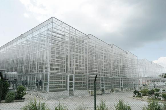La première ferme verticale (Sky Green) à Singapour